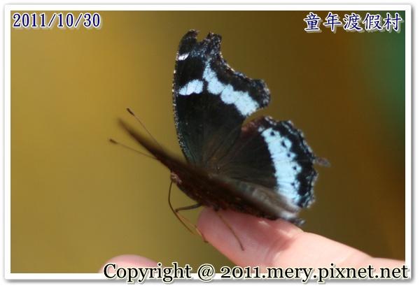 IMG_0808-1.JPG
