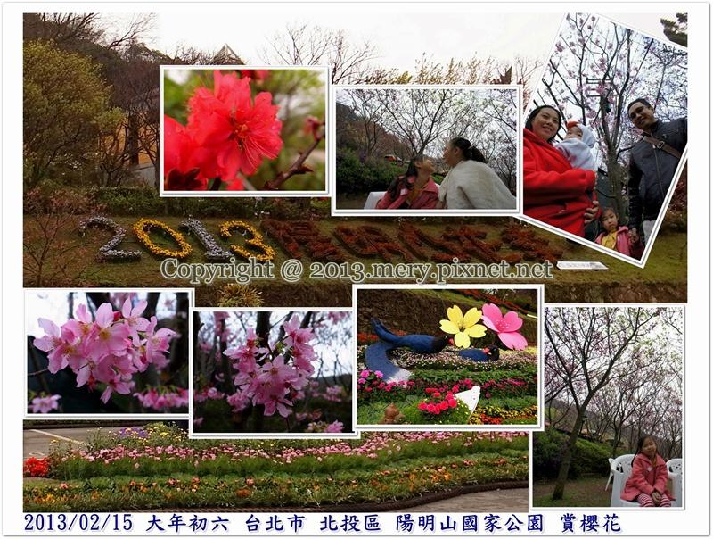 20130215陽明山賞櫻-書涵照片