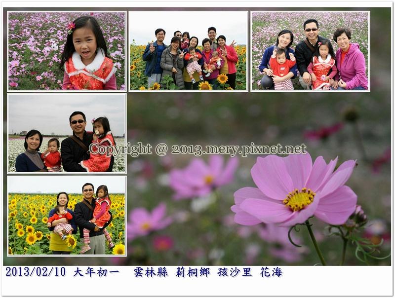 20130210雲林莿桐花海-書涵照片
