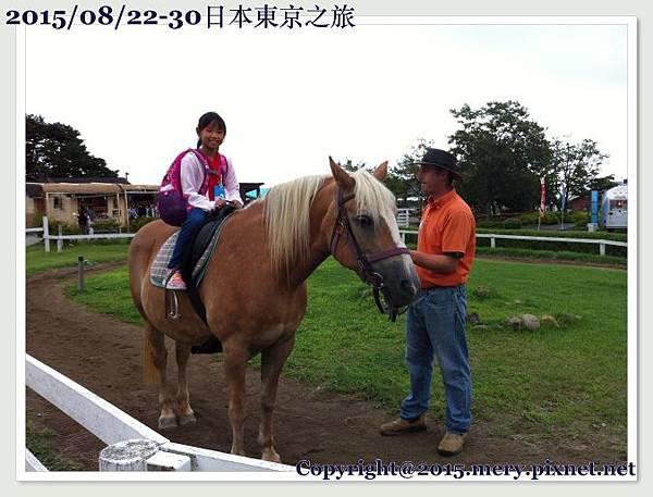 batch_IMG_7017.JPG