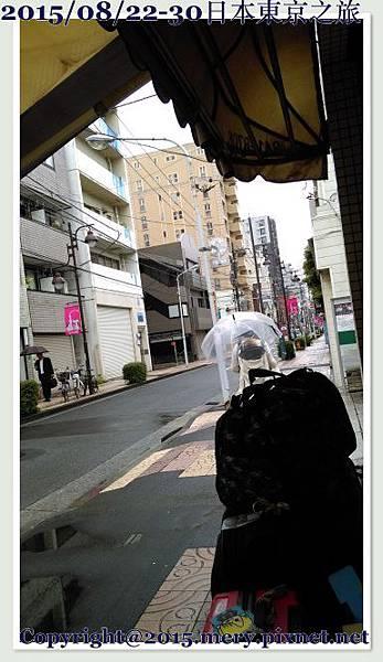 batch_IMAG0454.jpg