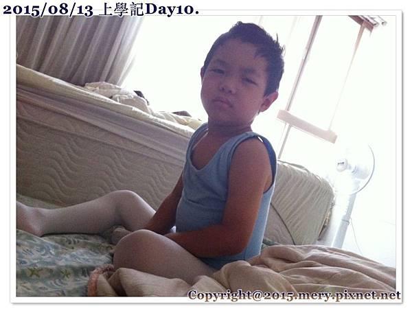 batch_IMG_6475_1024.jpg