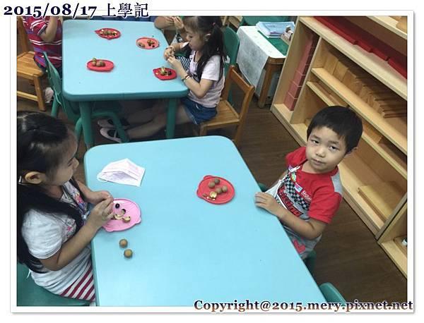batch_尚囷分享龍眼_9495.jpg