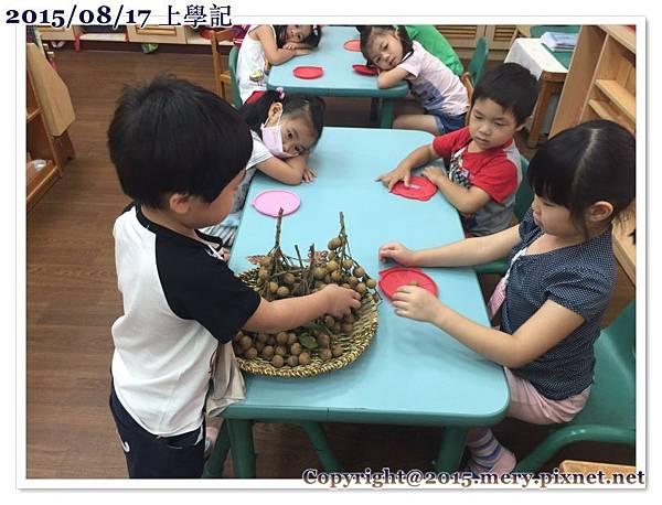 batch_尚囷分享龍眼_1289.jpg