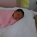 ANGUS:人家從嬰兒室出來了,可是爸爸在睡覺不陪我玩