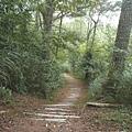 賞鳥步道 (3).JPG