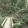 賞鳥步道 (8).JPG