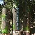 檜山巨木步道.JPG