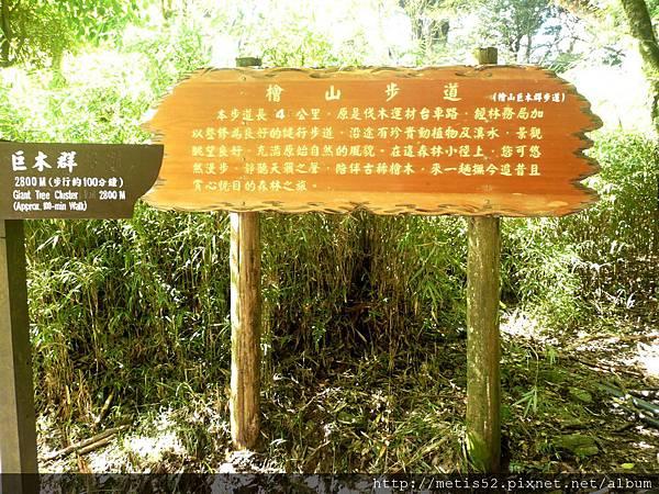 檜山巨木步道 (1).JPG
