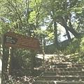 檜山巨木步道 (3).JPG