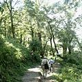 檜山巨木步道 (5).JPG