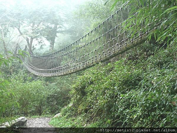 檜山巨木步道 (68).JPG