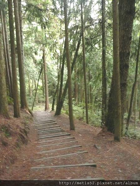 瀑布步道 (4).JPG