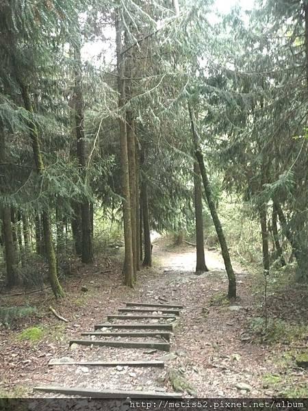 瀑布步道 (6).JPG