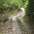 瀑布步道 (25).JPG