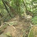 第一條攀岩路2 (1).JPG