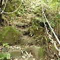 第一條攀岩路2 (2).JPG