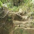 第一條攀岩路 (8).JPG