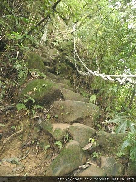 第一條攀岩路 (11).JPG
