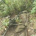 第一條攀岩路 (17).JPG