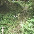 第二條攀岩路 (10).JPG
