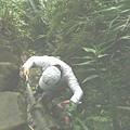 第五條攀岩路3 (1).JPG