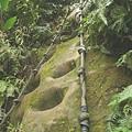 第五條攀岩路 2.JPG