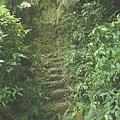 第五條攀岩路 (8).JPG