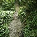 第四條攀岩路1.JPG