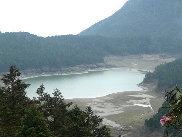 翠峰湖環湖步道 (14).JPG