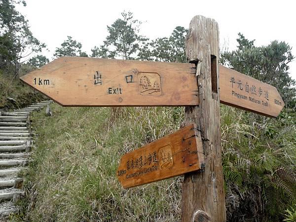 翠峰湖環湖步道 (55).JPG