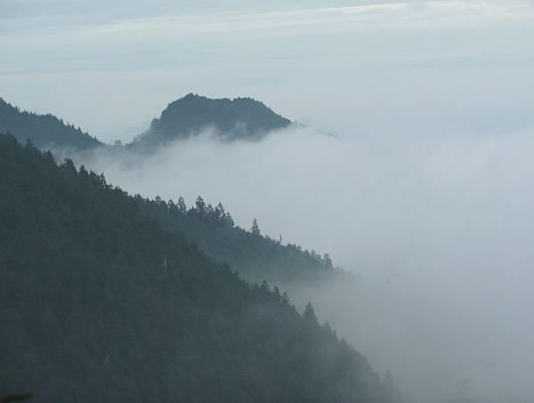 翠峰湖環湖步道 (37).JPG