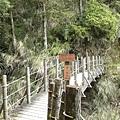 翠峰湖環湖步道 (21).JPG