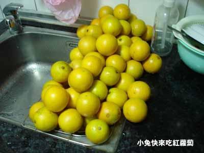 15斤柳丁