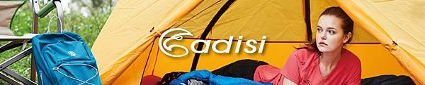 ADISI-Banner.jpg