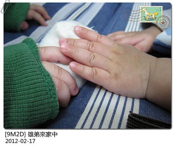 IMG_4104_副本.jpg
