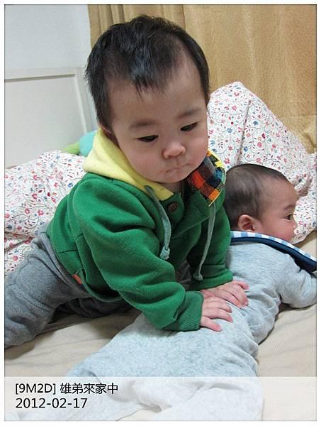 IMG_4134_副本.jpg