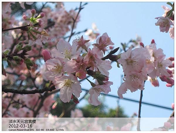 IMG_5134_副本