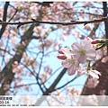 IMG_5169_副本