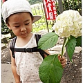 DSC06202_副本