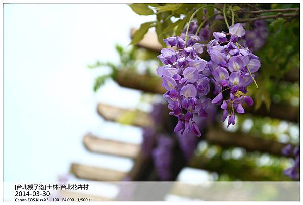 IMG_5693_副本.jpg