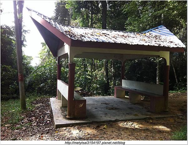 爬山-- Hutan Simpan Gunung Tampin