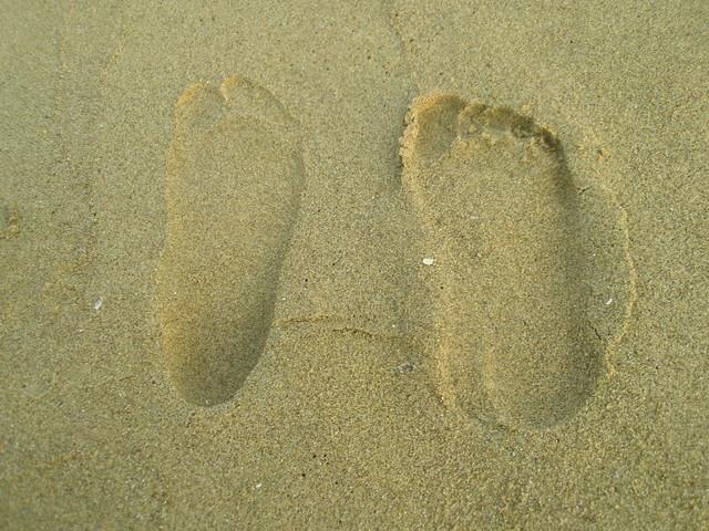 猜猜哪個是我的腳