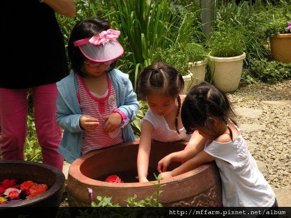 110728 溫帶花卉區 玩水的孩子 (2).JPG