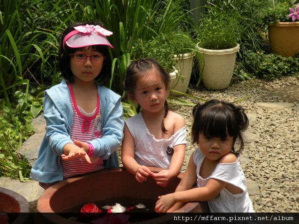 110728 溫帶花卉區 玩水的孩子 (6).JPG