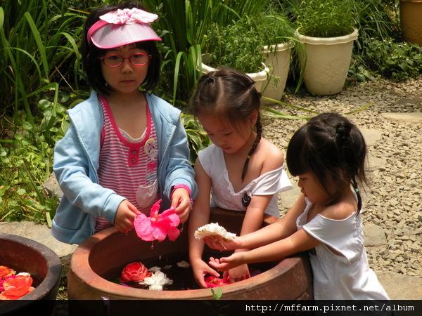 110728 溫帶花卉區 玩水的孩子 (4).JPG