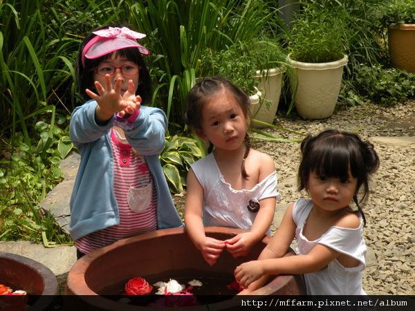 110728 溫帶花卉區 玩水的孩子 (5).JPG
