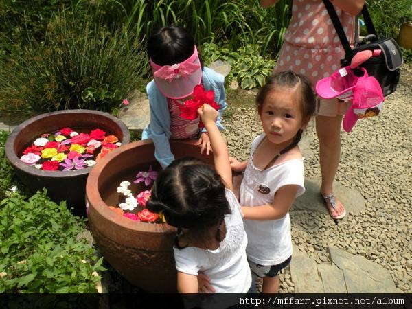 110728 溫帶花卉區 玩水的孩子 (1).JPG