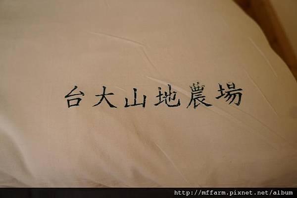 120715枕頭上的字