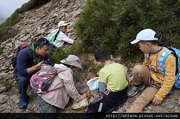 120716合歡山登山口  發現什麼了嗎
